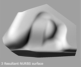 RhinoReverse Surface