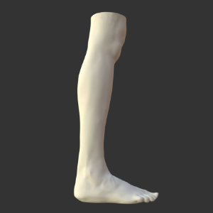 Artec3D scanned part - Human leg